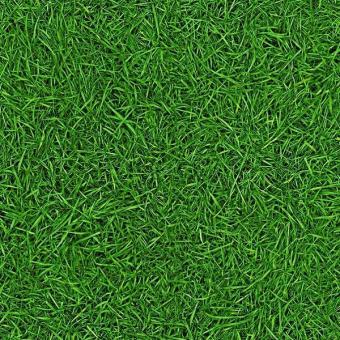 Линолеум IVC Bingo Grass 25 2,5м