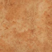 Линолеум Tarkett Rekord 41 Akcent Orange 2,0м